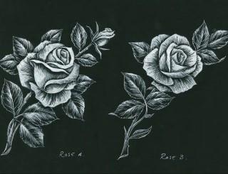 Rose A Rose B