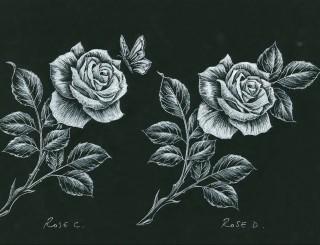 Rose C Rose D